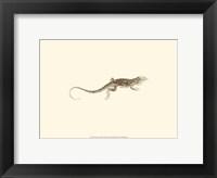 Framed Sepia Lizard II