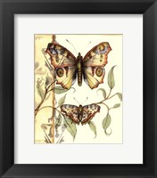 Framed Mini Tandem Butterflies I