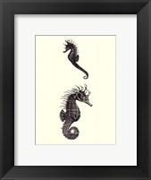 Framed Sepia Seahorse