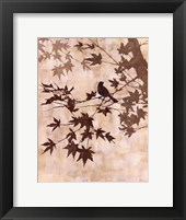 Maple Chorus II Framed Print