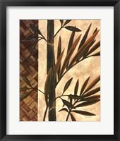 Framed Palm Breeze