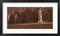 Hyde Park Afternoon II Framed Print
