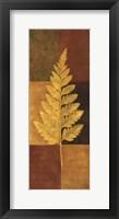 Woodland Impressions II Framed Print