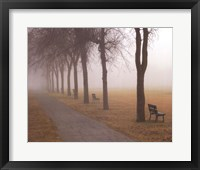 Framed Foggy Day