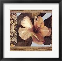 Hibiscus II Framed Print