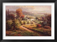 Valley View II Framed Print