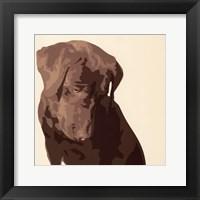 Framed Chocolate Labrador