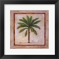 Framed Banana Palm