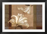 Lily Duet - Cs Framed Print