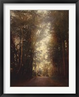 Road Of Mysteries II Framed Print