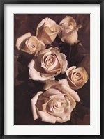Framed Gathering Roses