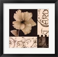 Framed Hibiscus Blossom I