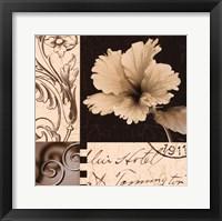 Framed Hibiscus Blossom II