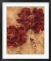 Glorious Rosso II Framed Print