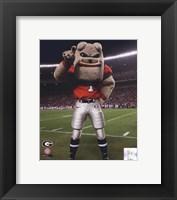 Framed Univserity of Georgia Bulldogs Mascot 2007