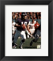 Framed Fran Tarkenton Action