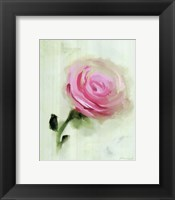 Framed Pink Rose