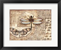 Poetic Dragonfly I Framed Print