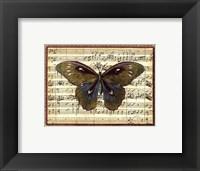 Framed Butterfly Harmony I