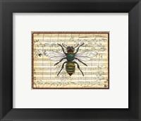 Framed Bumblebee Harmony I