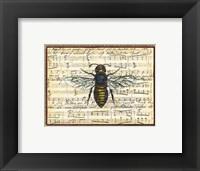 Framed Bumblebee Harmony II