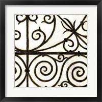 Iron Gate IV Framed Print