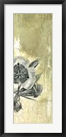 Celadon in Bloom III Framed Print