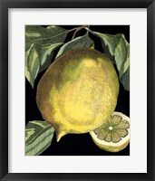 Fragrant Citrus I Framed Print