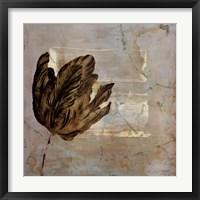 Framed Tulip Dream II