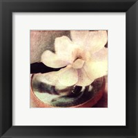 Nature's Blossoms III Framed Print