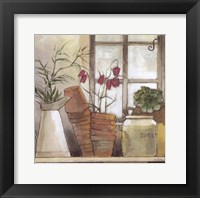 Framed Flower Pots