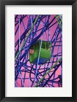 Framed Cable Car - technicolor