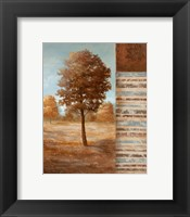 Framed Autumn Aire II