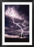 Framed Lightning Striking Tree II