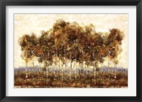 Framed Treescape I
