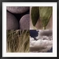 Framed Desert Moods