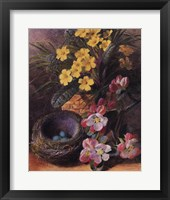 Framed Apple Blossom & Primroses