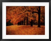 Framed Gold of Autumn West
