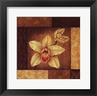 Framed Cymbidium Orchid