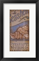 Treasures From The Sea Framed Print