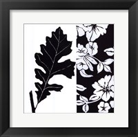 Black And White II Framed Print