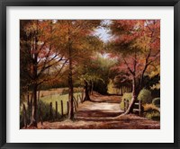 Framed Autumn Country Road