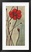 Eclat Rouge Framed Print