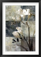 Memento II Framed Print