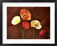 Poppy Perfection I Framed Print