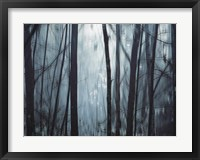 Framed Spring Mist I