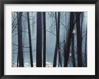 Framed Spring Mist II