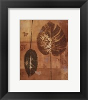 Shades of Gold II Framed Print