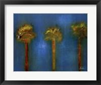 3 Palms I Framed Print