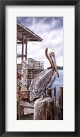 Framed Pelican Key